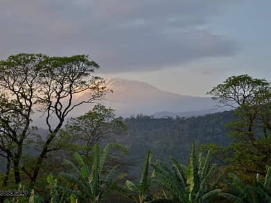 trail running africa