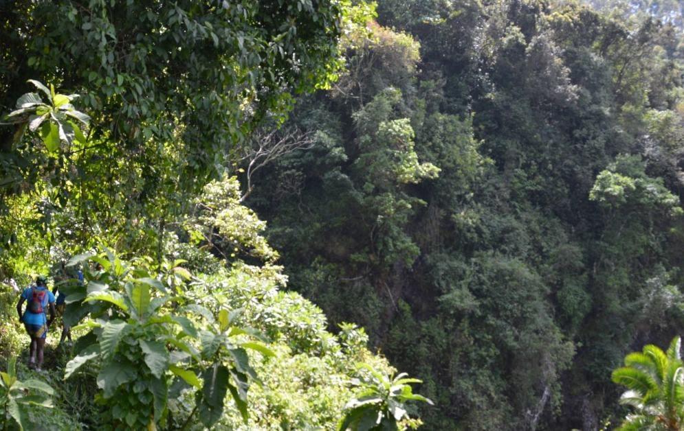 trail running tanzania